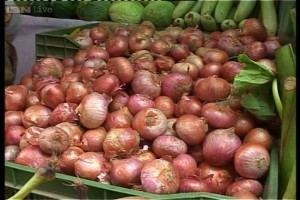 ec-allows-delhi-govt-to-sell-onions-from-mobile-vans_261013114229-300x200